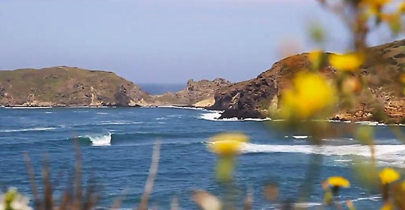 cerdena-surf
