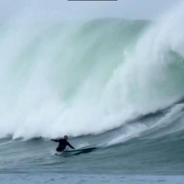 peta-avalanche-wipeout
