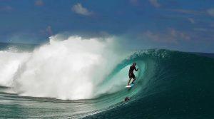 rob machado surfboard