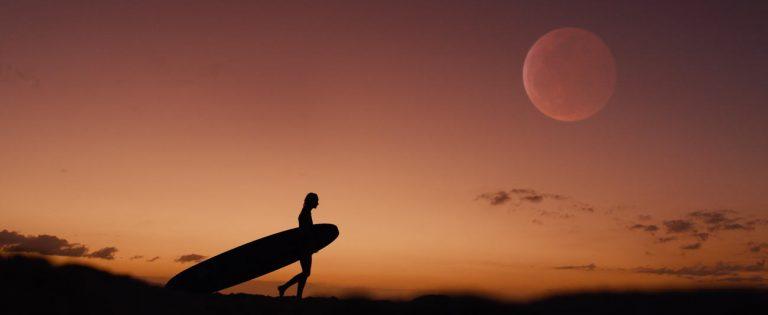 hono-surf