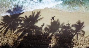 hawaii surf