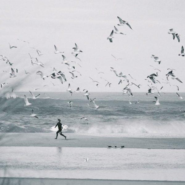 lucas silveira surf