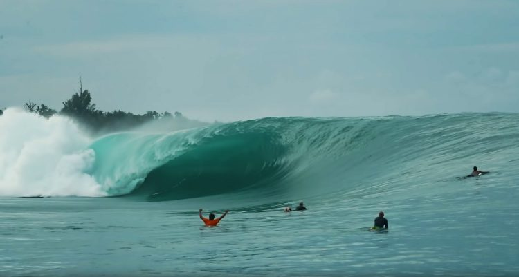 greenboush-mentawai
