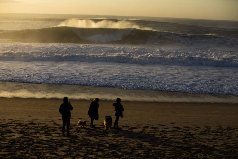 surf en Hossegor