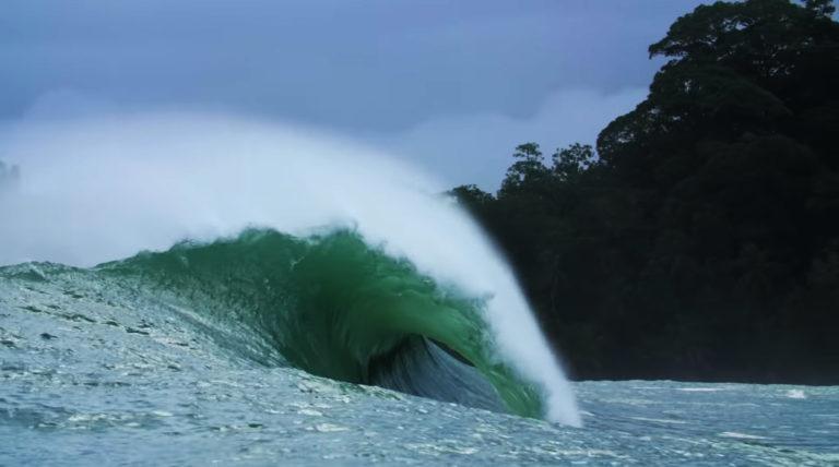 silverbacks-panama-surf