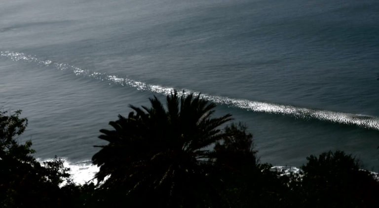 surf-safi