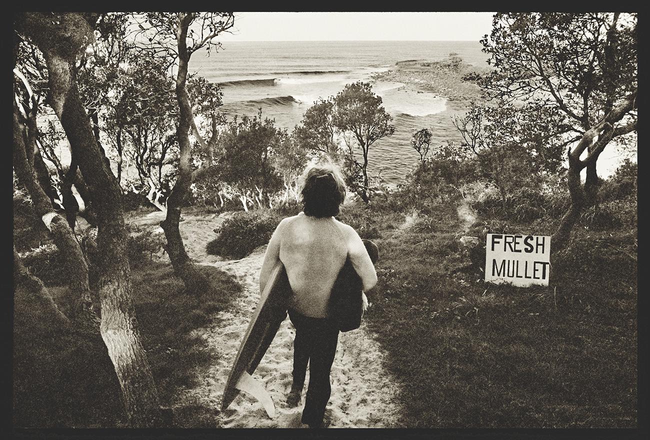 Fresh Mullet ©John Witzig